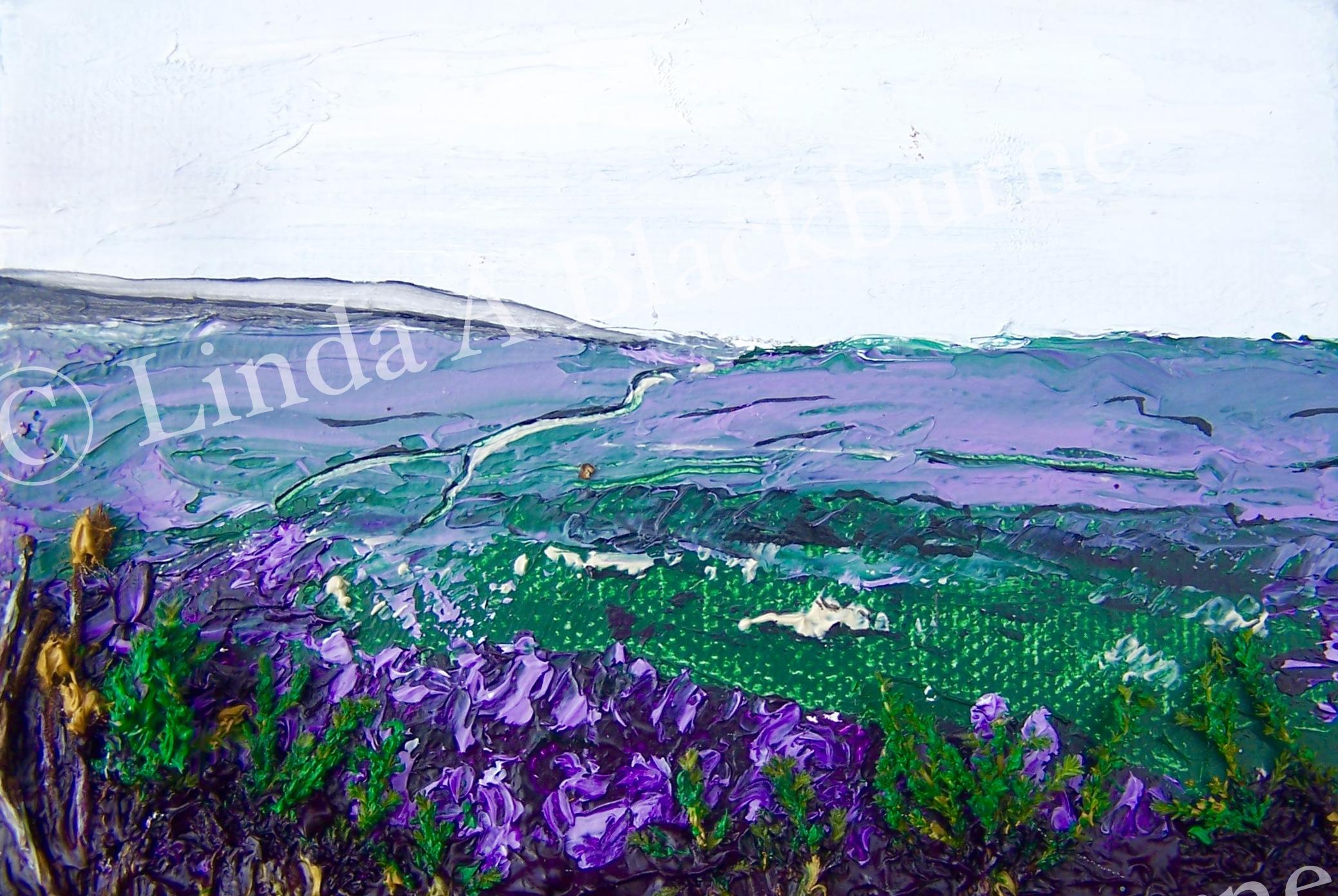 Spaunton Moor in Purple Coat